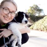 Professional Dog Trainer Inner Sydney