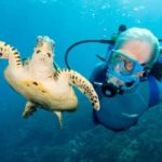 Diving with Hammerhead Sharks 7 Day Package – Book a Package