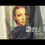 Otilia Brumă Deli Gibi şarkı sözleri