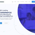 eCommerce Business Plan Writers – eCommerce Startup Consultants