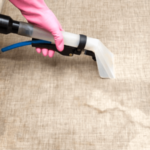 Why Hire Professional Upholstery Cleaning Services Adelaide?
